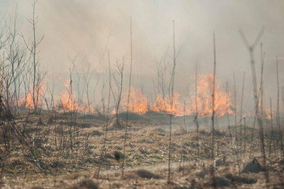 Žolės gaisrai niokoja šalį: lyderiaujančiame regione situacija prasta jau antrus metus
