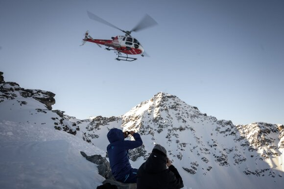 Sraigtasparnis ir akmenys /Scanpix/Shutterstock nuotr.