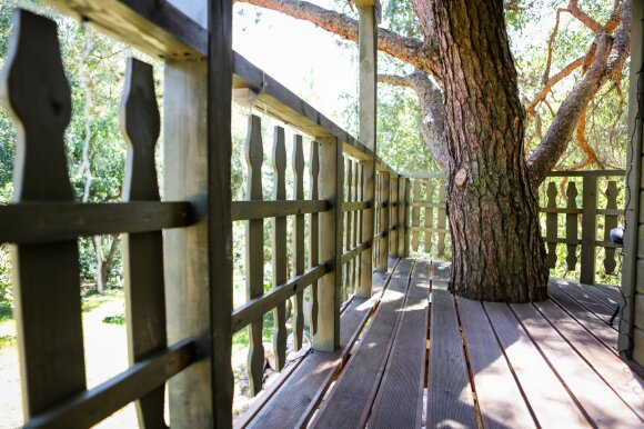Namelis medyje