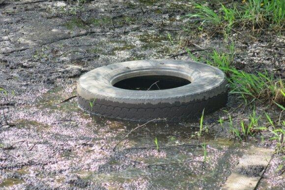 Kai kurios padangos paliekamos keisčiausiose vietose, pavyzdžiui, vandeny