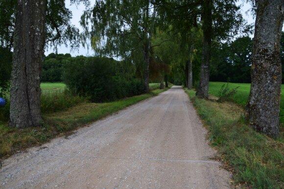 Senovinis kelias Ragainė-Tauragė