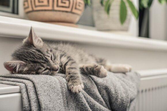 Ekspertas pateikė net 10 efektyvių būdų, kaip sutaupyti šildant butą ar namą