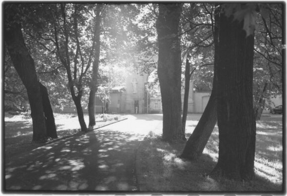Sapiegų parkas, 2012 06 / D. Labeckio nuotr.