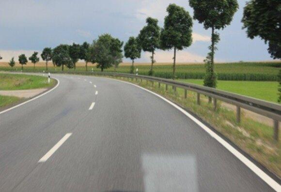 Vokietijoje kelių tiesimo procesas  apima ir apželdinimą