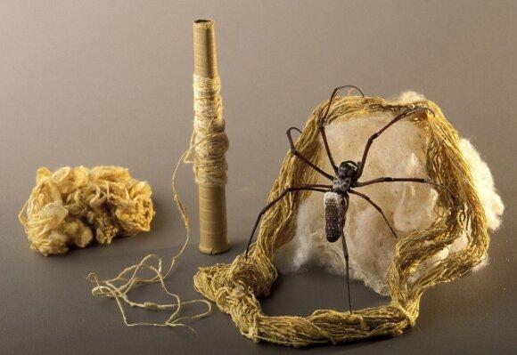 Vorų šilkas