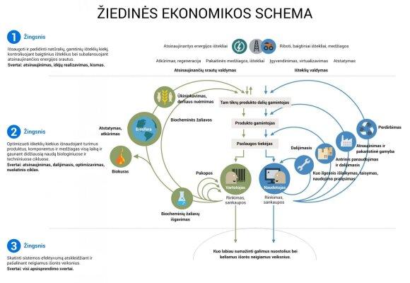 Žiedinė ekonomika