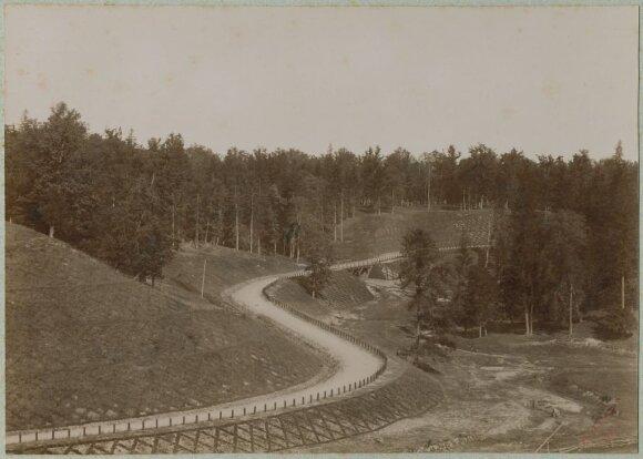 Ąžuolynas ties A. Mickevičiaus slėniu, 1885-1895 m.  // Vaclovas Zatorskis, Nacionalinio M. K. Čiurlionio dailės muziejaus nuotr.