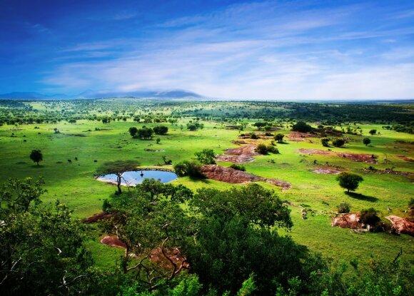 Serengečio nacionalinis parkas, Tanzanija