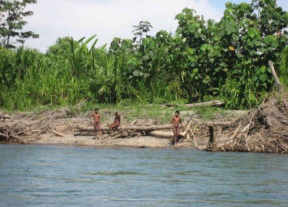 Pavojingiausios pasaulio upės: neįtikėtinos priežastys, kodėl kojos į jas geriau nekišti