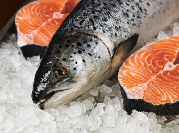 Lašišos - vienos iš delikatesinių žuvų. Tačiau kartu - ir kaupiančios daugiausia teršalų