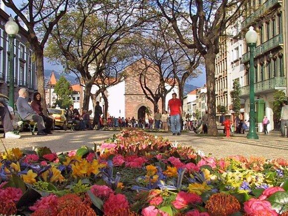 11 dalykų, dėl kurių verta nukeliauti į gėlėtąją Madeiros salą