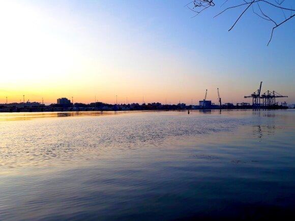 Rytinis uostas
