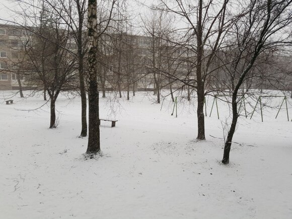 Snigas Klaipėdoje. Foto / Renata Levickienė