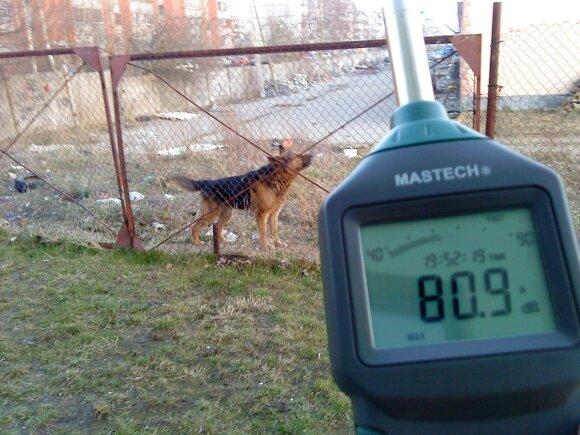 Klaipėdietė Dalia matuoja kaimynų šunų keliamą triukšmą