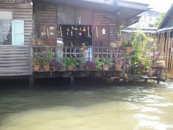 Tailando vilionės: čia jums ne Palanga