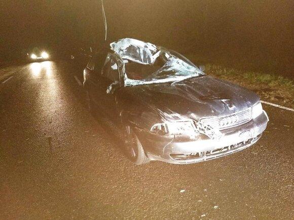 """""""Audi"""" susidūrė su arkliu: vairuotojas sunkiai sužalotas, mašina sumaitota"""