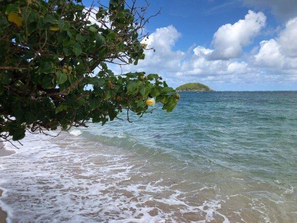 Atostogos Karibuose