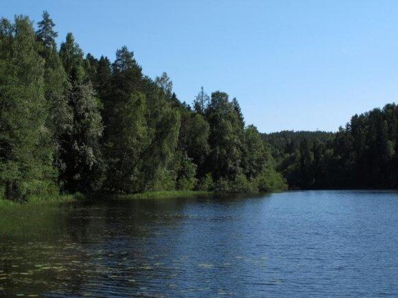 Pokenės ežeras