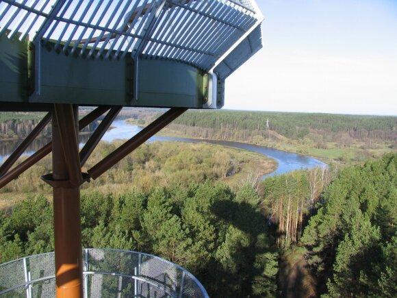 Merkinės apžvalgos bokšto panorama
