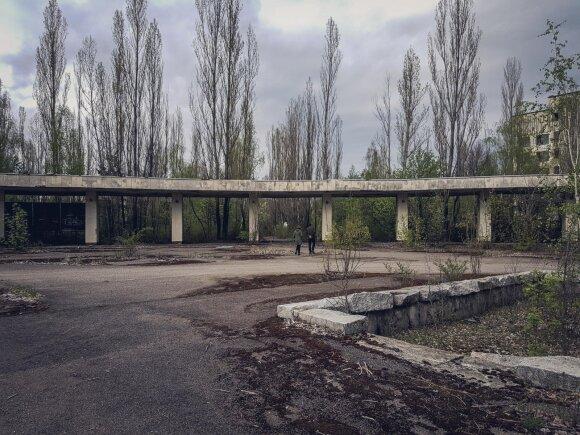Baisūs įrodymai: baltarusiškame piene – Černobylio nuosėdos
