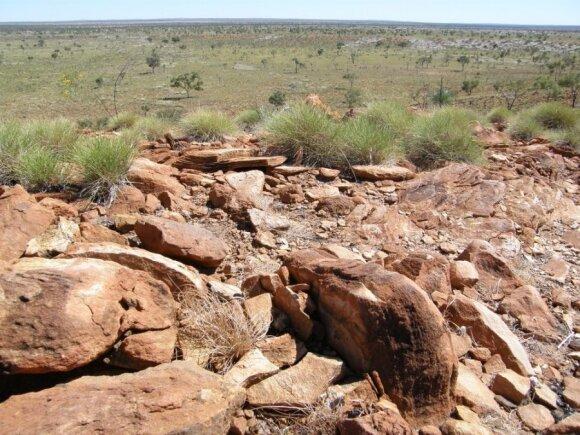 Vulfo Kriko krateris Australijoje - liūdnas Žemės ir meteorito susidūrimo pavyzdys