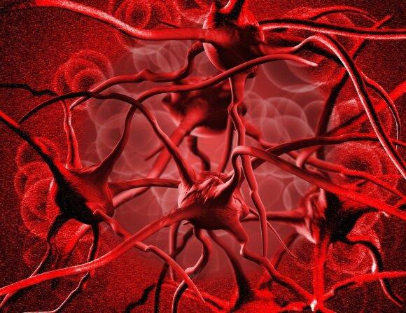 Keletas įdomių faktų apie žmogaus kraują, kurių galbūt nežinojote