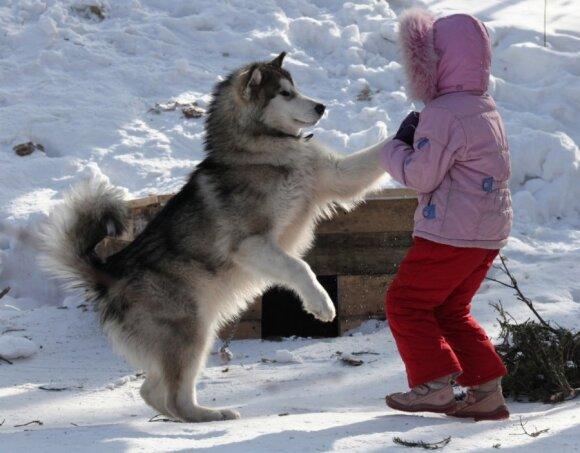 Vaikas bijo šuns: psichologės patarimai