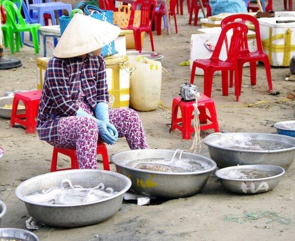 Vietnamas: 1050 km palei vandenį