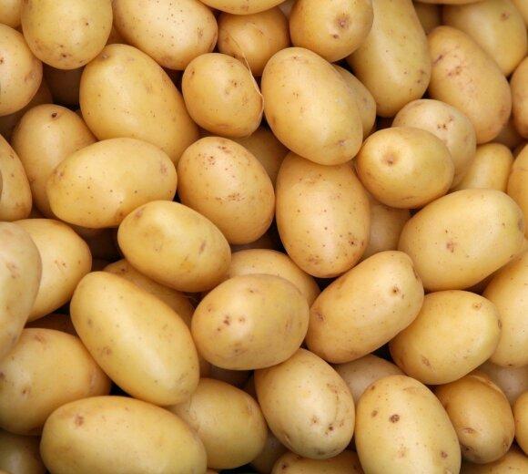 Vis dar valgote bulves? Biomedicinos mokslų daktarė atsakė, kenkia jos ar naudingos sveikatai
