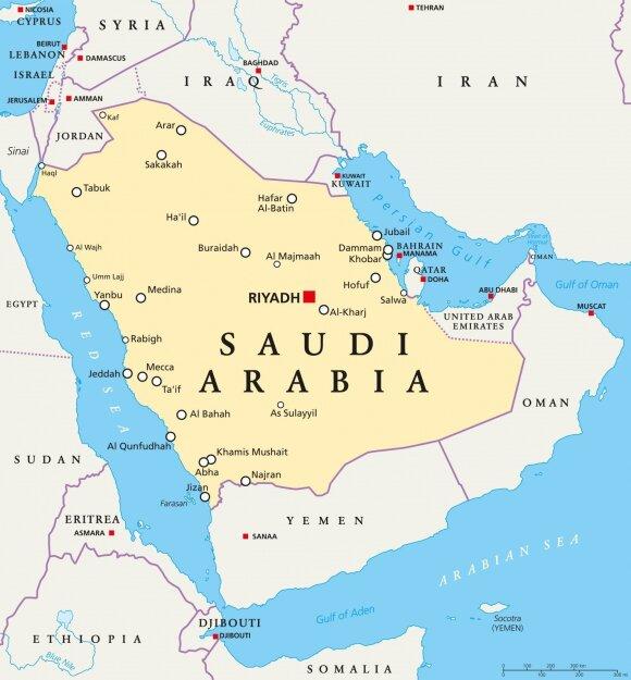 Saudo Arabijos kronprincas žada naują erą – dykumų šalis pasikeis neatpažįstamai