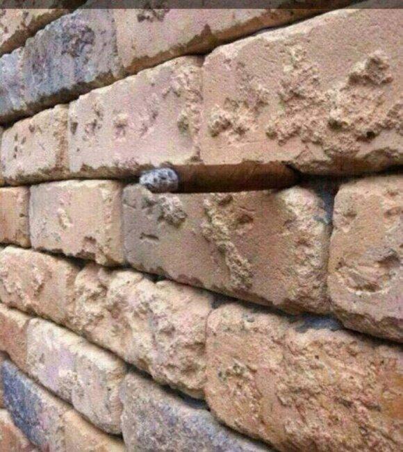 Keisčiausios optinės iliuzijos: ar suprantate, kas čia vyksta?