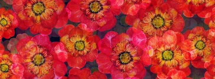 Interjeruose vėl karaliauja vintažiniai gėlių motyvai