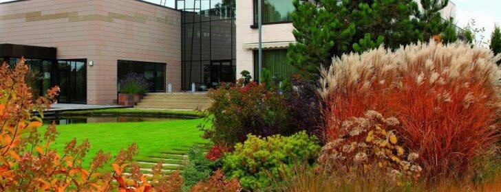 38 arų sodas, kuriame visada yra kuo grožėtis
