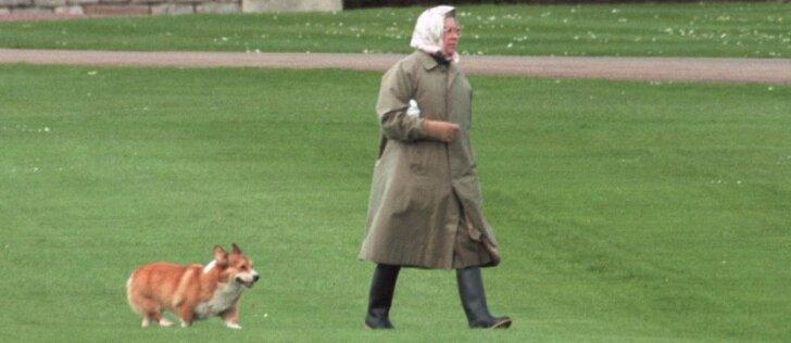 Britų karalienė neteko paskutinio korgio