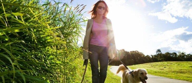 Dažną šunų ir kačių šeimininkų įprotį veterinaras vadina nusikaltimu