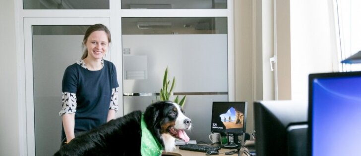 Valstybinėje įstaigoje šiandien darbuojasi šunys: kolegos negali atplėšti nuo jų akių