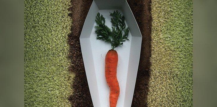 """""""Paskutinis morkos noras buvo būti suvalgyta"""" / © United Nations Regional Information Centre nuotr."""