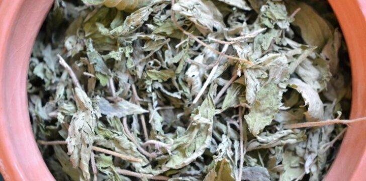 Pasaldinti vienam arbatos puodeliui užtenka vieno džiovinto stevijos lapelio.