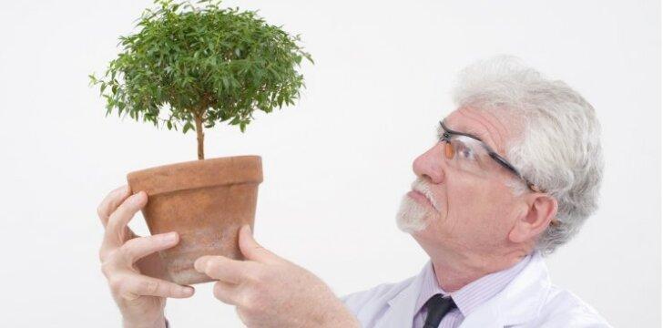 gamtos mokslai, botanika, mokslininkas, mokslas, sodininkystė, institutas, vazonas, daržas