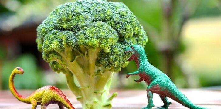 """Kodėl brokolis vadinamas viena sveikiausių daržovių <span style=""""color: #ff0000;""""><sup>+3 receptai</sup></span>"""