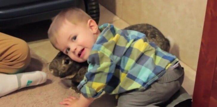 Pažiūrėkite kas darosi, kai mažylis pamato savo triušiuką!