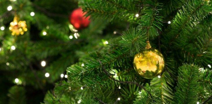 Kaip prižiūrėti Kalėdų eglutę, kad ji žaliuotų visas tris savaites