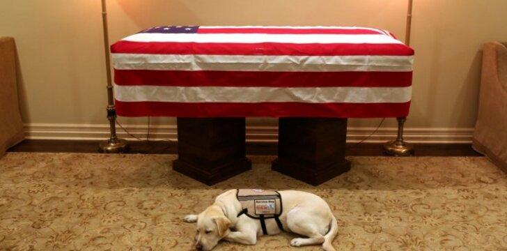 Velionio Bušo šuo budėjo prie mirusio šeimininko karsto