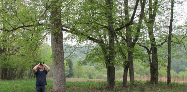 Gamtininkų klubas kviečia į gerai pažįstamą parką pažvelgti kitu žvilgsniu