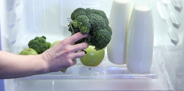 Kaip teisingai laikyti maisto produktus šaldytuve?