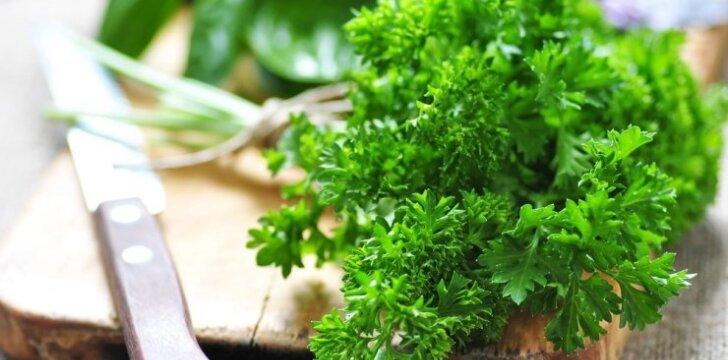Prieskoniniai augalai, kuriuos žiemą galima auginti ant palangės