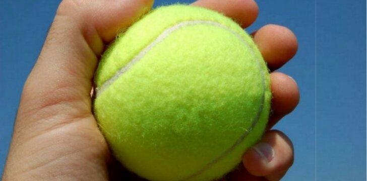 Internete verda aistros: kokios iš tiesų spalvos šis kamuoliukas?