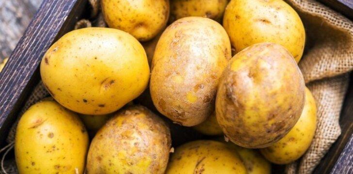 NUSTATYTA: 10 sveikiausių maisto produktų (yra ir jūsų šaldytuve)