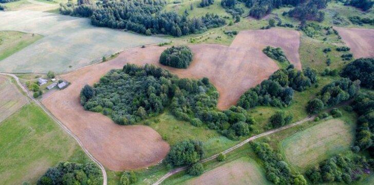 Mirtinos ligos telkiniai Lietuvoje – keliuose šimtuose vietų