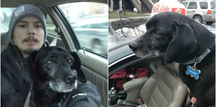 Picų išvežiotojas išgelbėjo pasiklydusį šunį